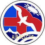 部隊特性徽(左肩)-現用